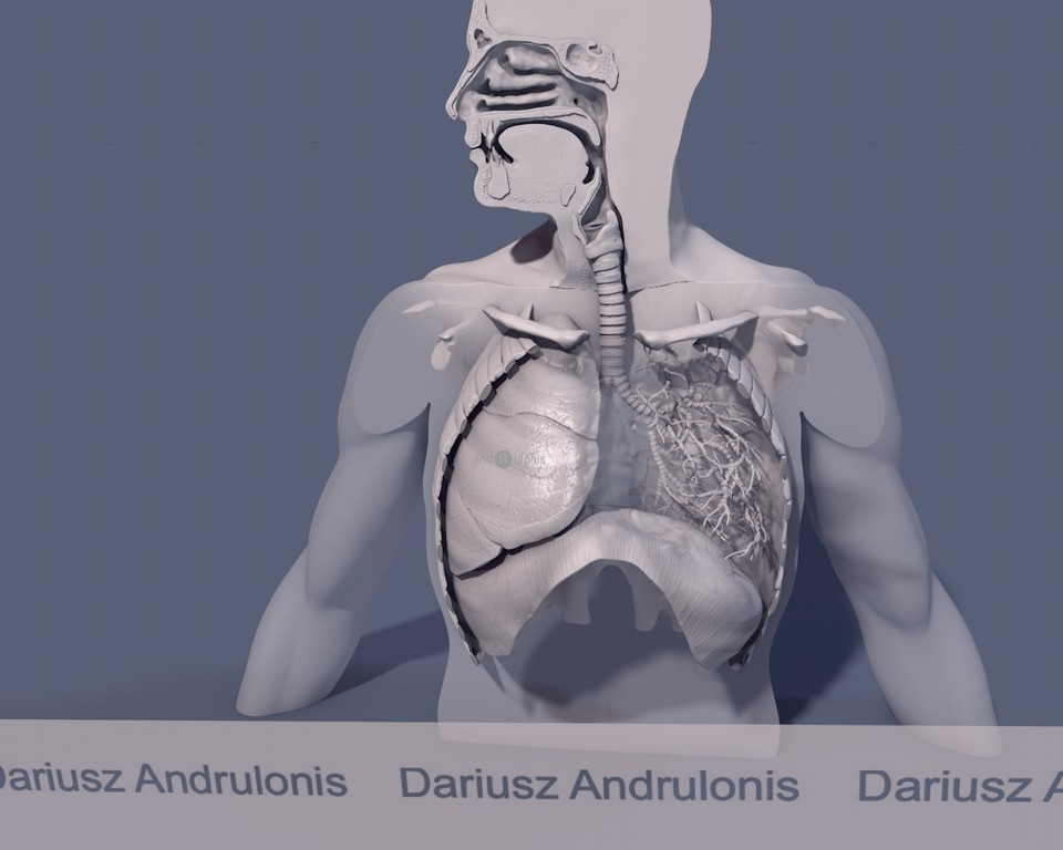 Dariusz andrulonis 2 oddechowy