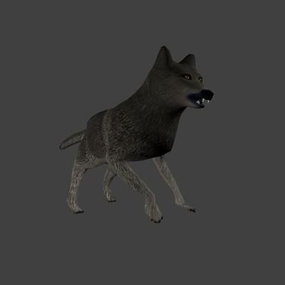 Daniel bernier low poly wolf image