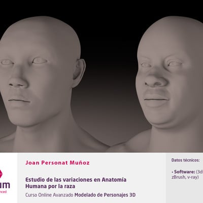Joan personat plantilla anatomia humana por la raza