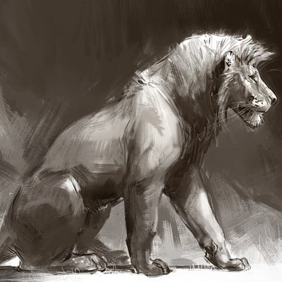 Jonathan kuo lion sketch