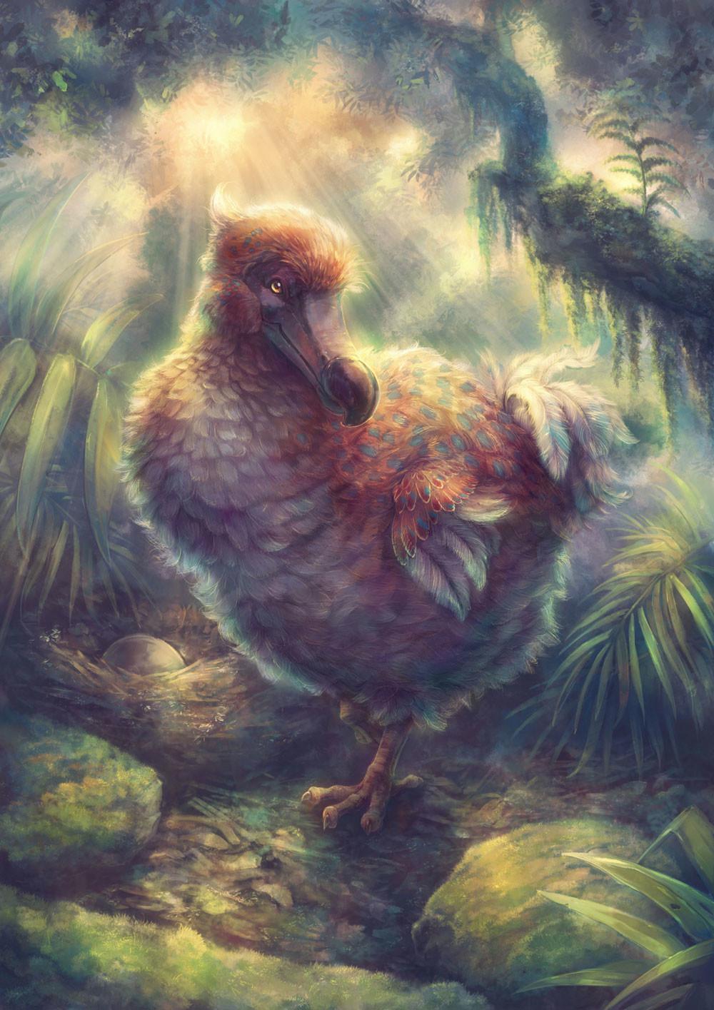 Iva vyhnankova dodo13c