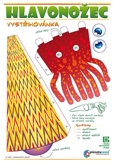 Iva vyhnankova cephalopod