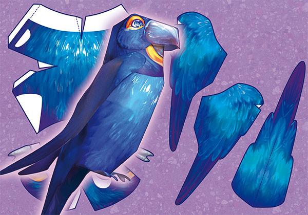 Iva vyhnankova ara blue