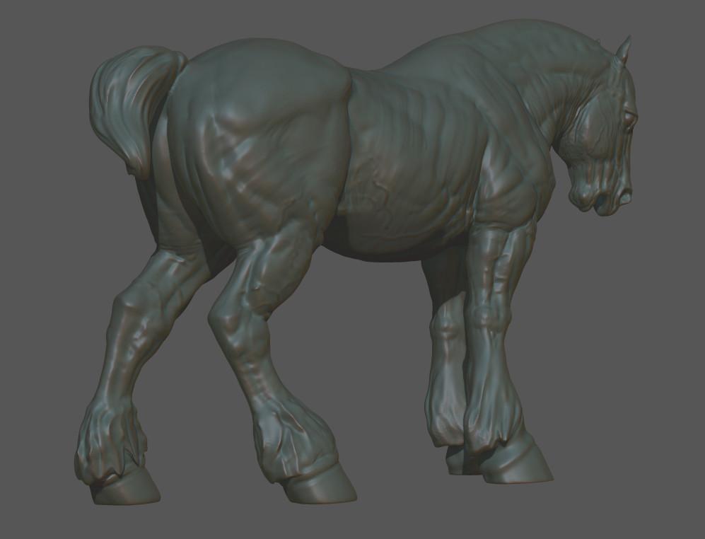 Ehren bienert horse3