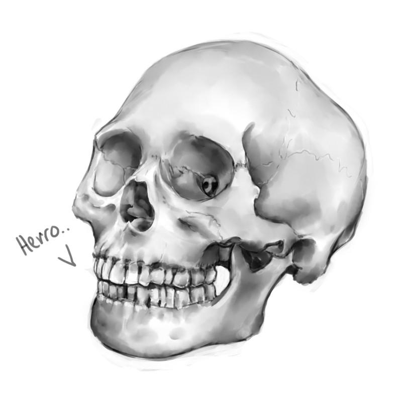 Priscilla firstenberg skullpractice1