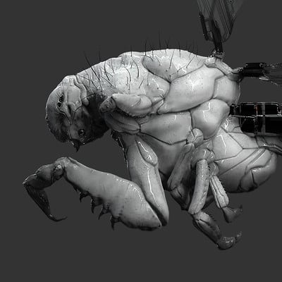 Observer Creature - FRAMESHIFT GAME CONCEPT ART