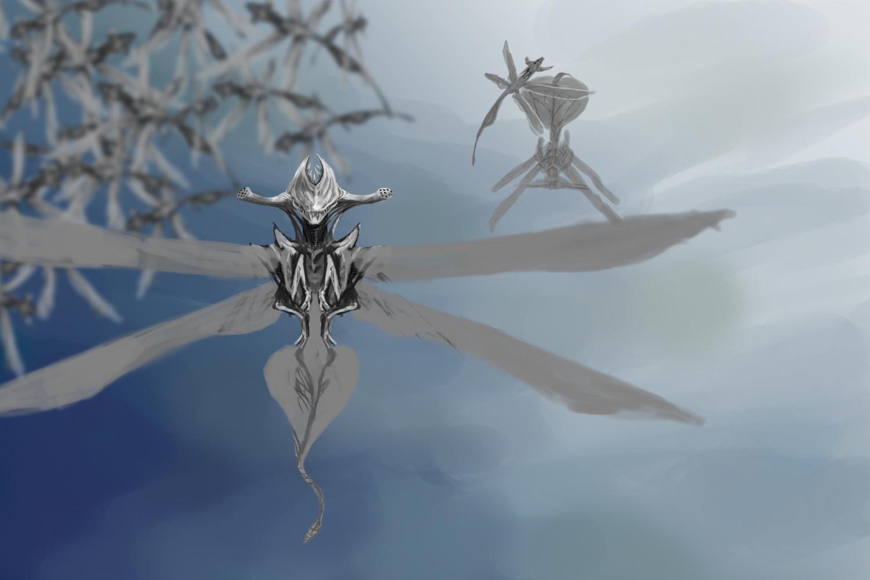 Orm irian swarm03