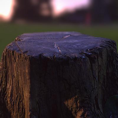 Pete mc nally petemcnally treestump image04