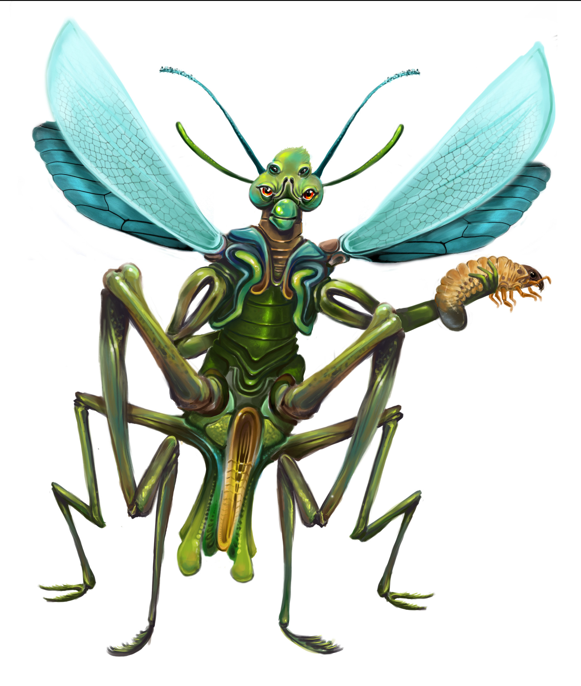 Josiah herman insectprojectfinal