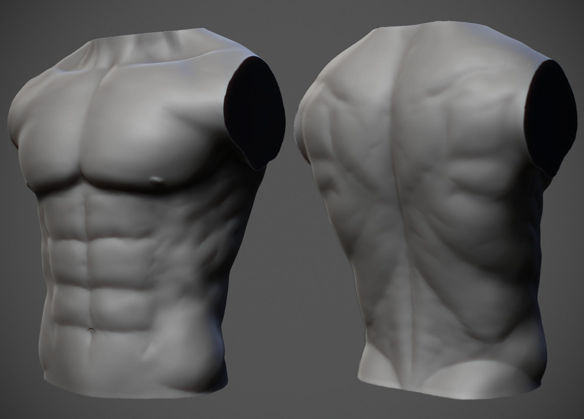 Thomas Debons - Male anatomy study
