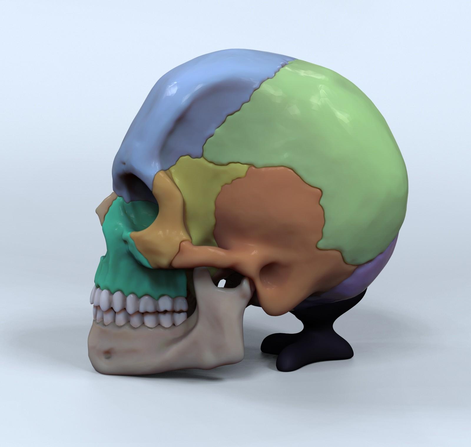Hector moran skull renders 2