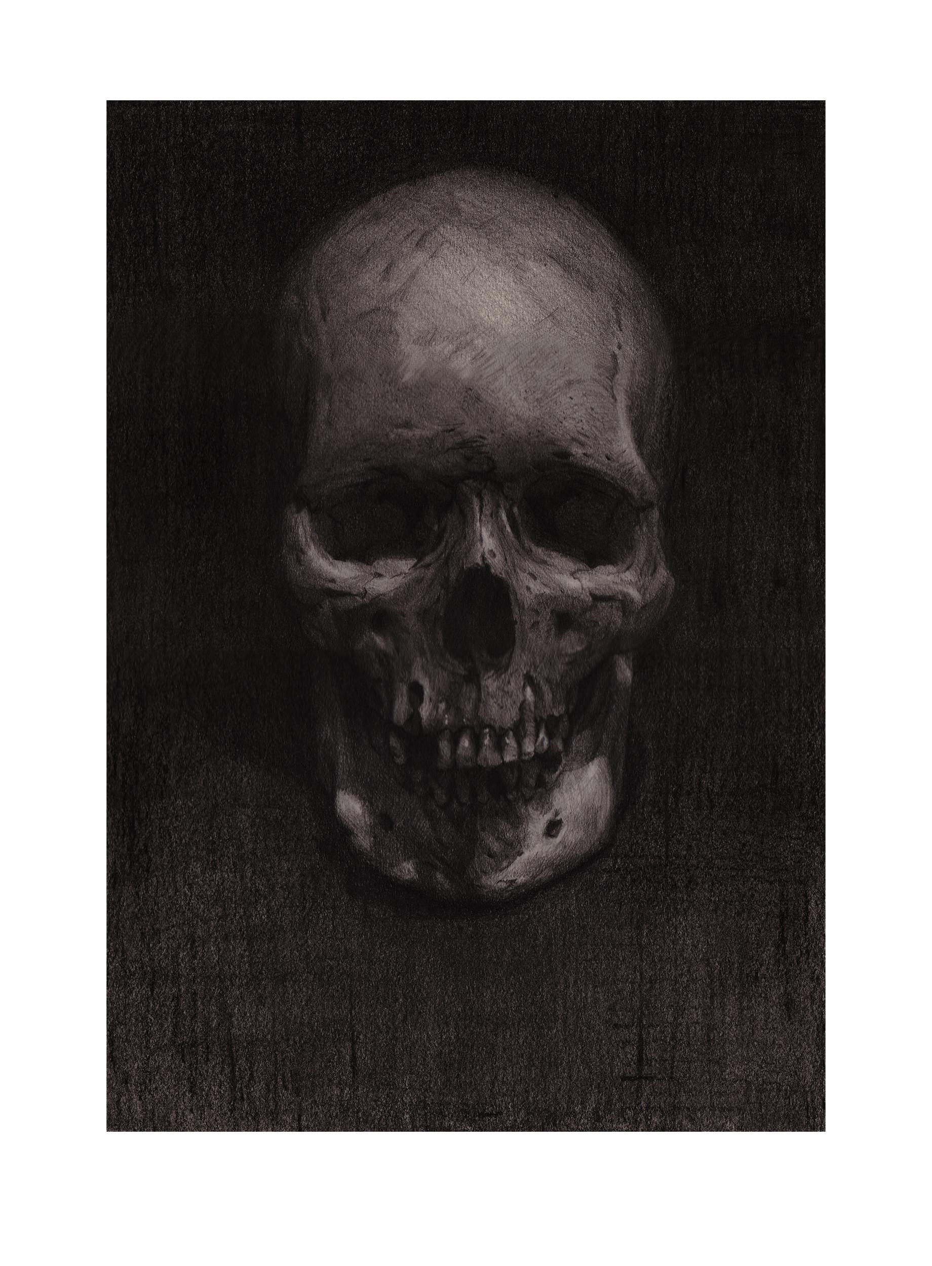 Brad wright skullstudy2