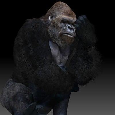 Doug drexler gorilla b sit 06