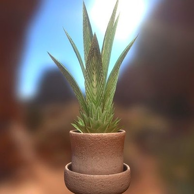 Dennis haupt indoor plant 3 1