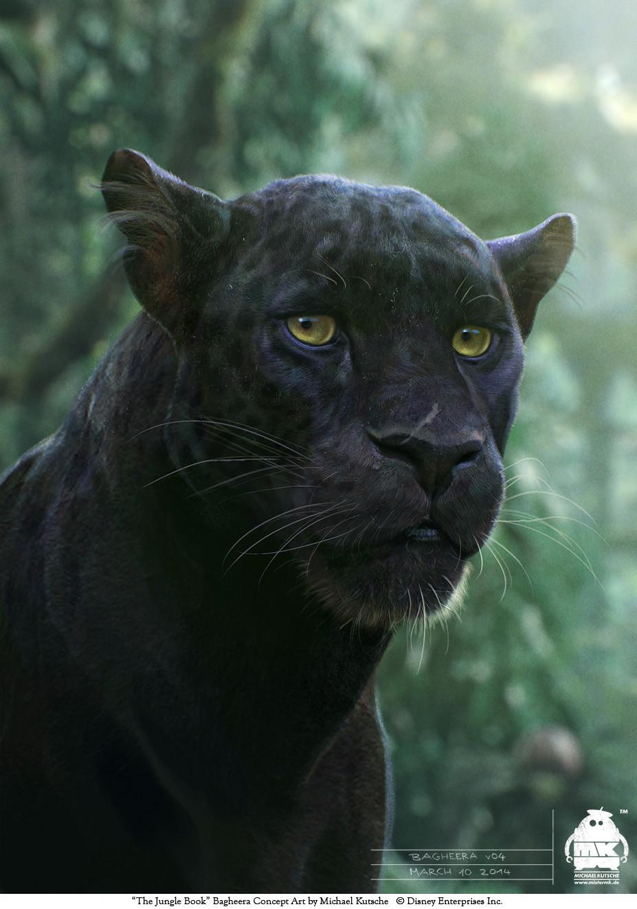 Le Livre de la Jungle [Disney - 2016] - Page 15 Michael-kutsche-bagheera-v04-by-michael-kutsche