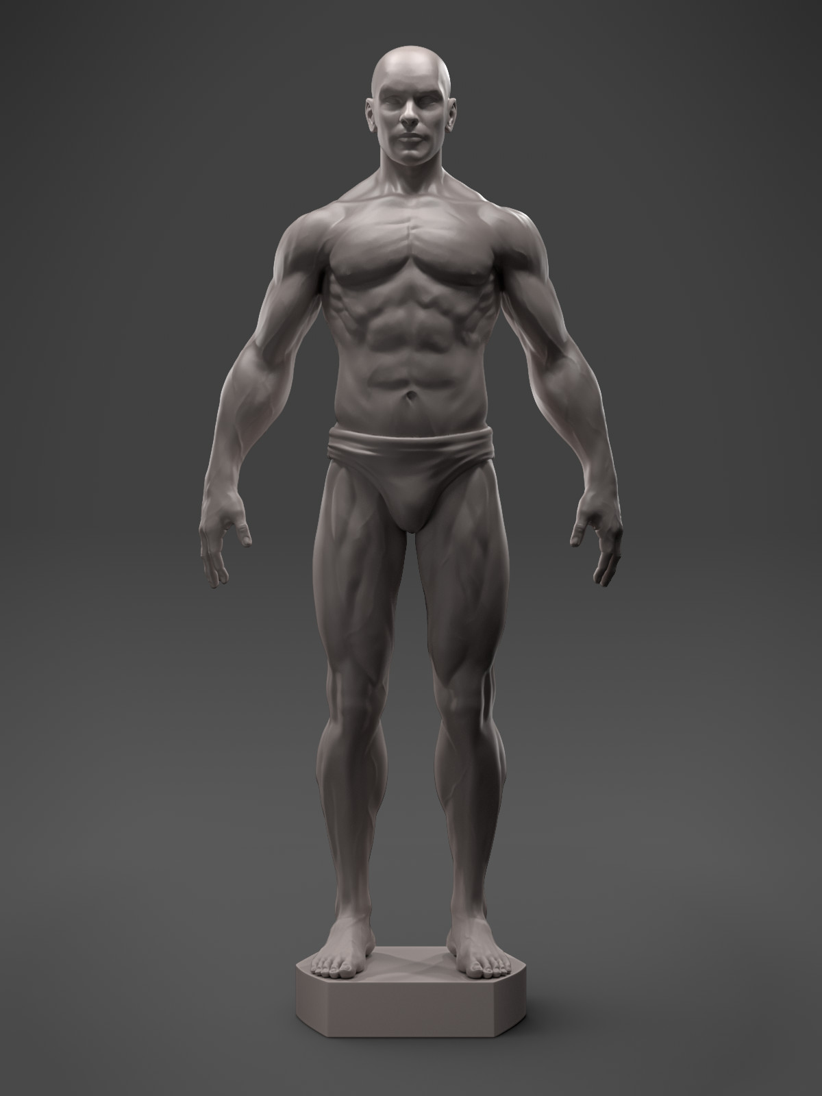 Male Anatomy Sculpt - 3D Asset