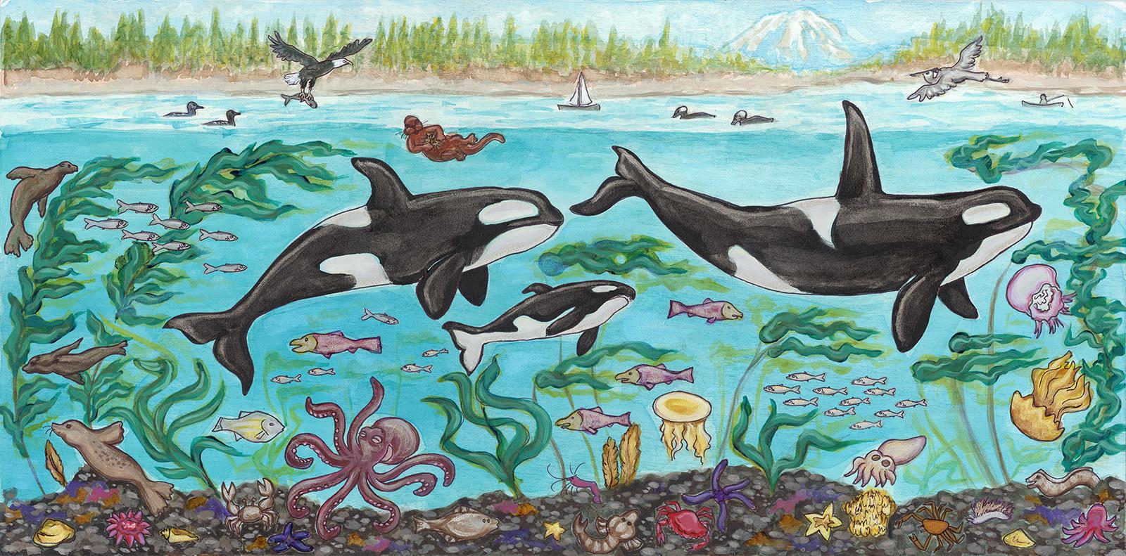 Orcas under Puget Sound