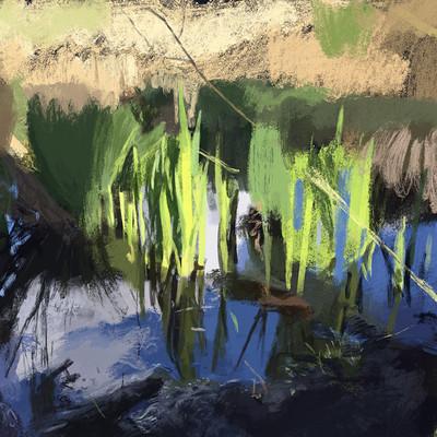 Guenter zimmermann swamp coloured 10mb