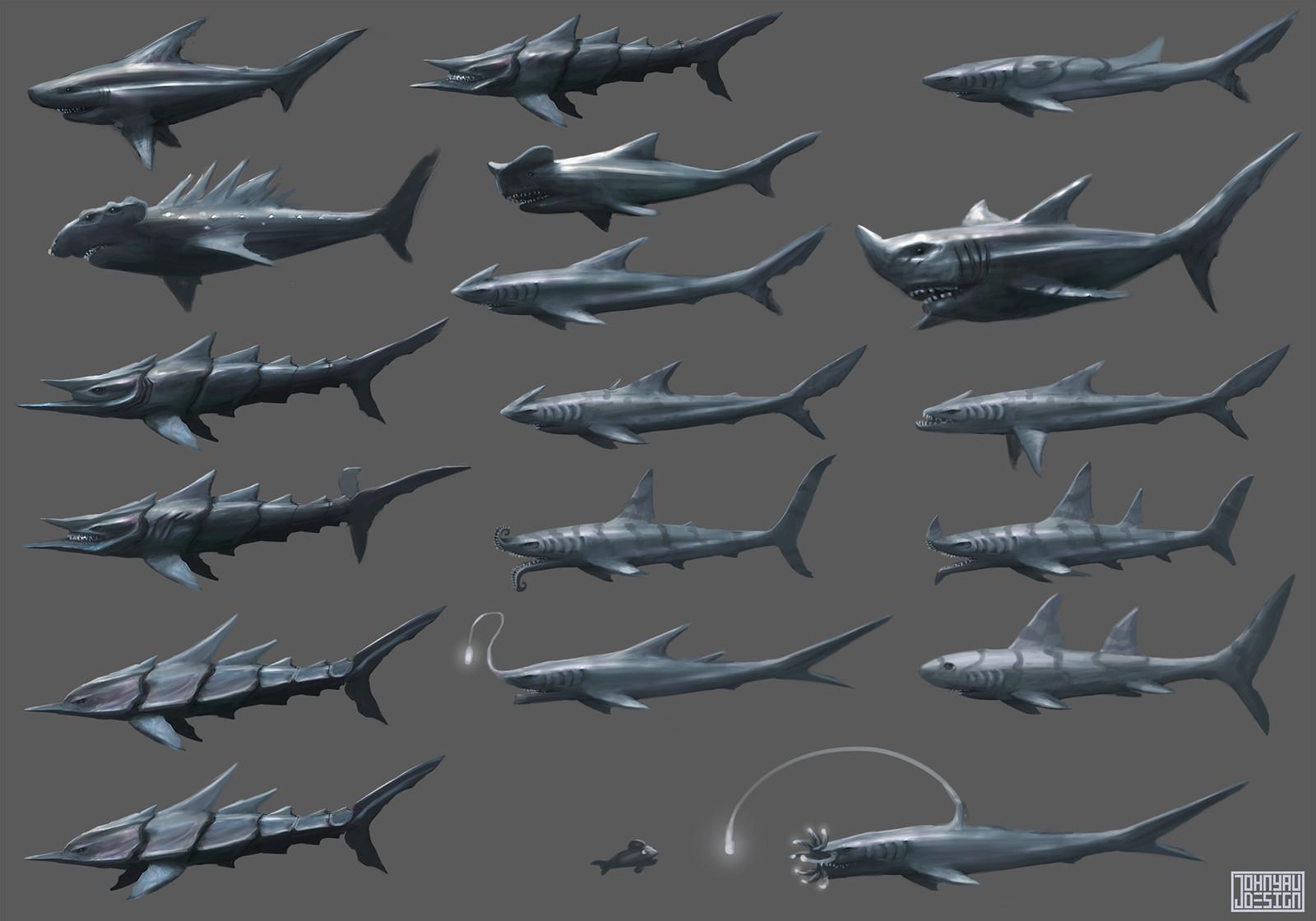 Shark Variations
