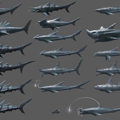 John yau sharks3