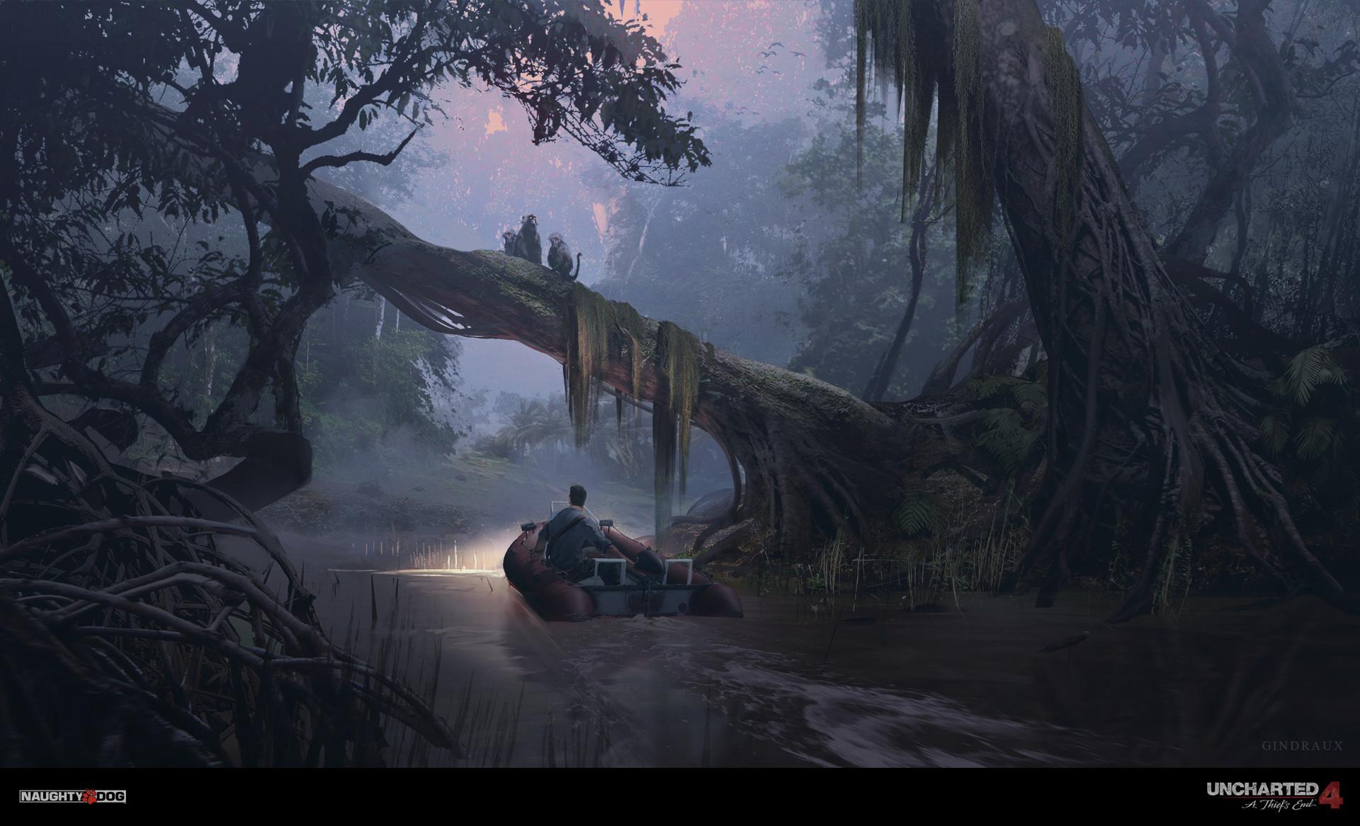 Nick gindraux jungle river3