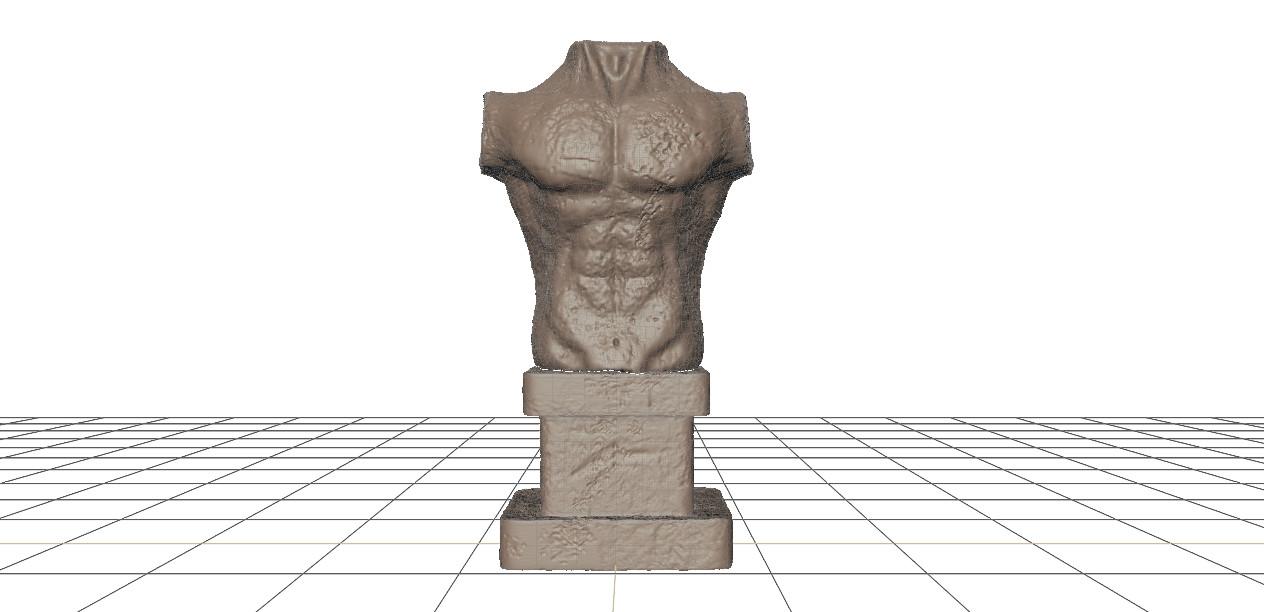 Aline de queiros torso