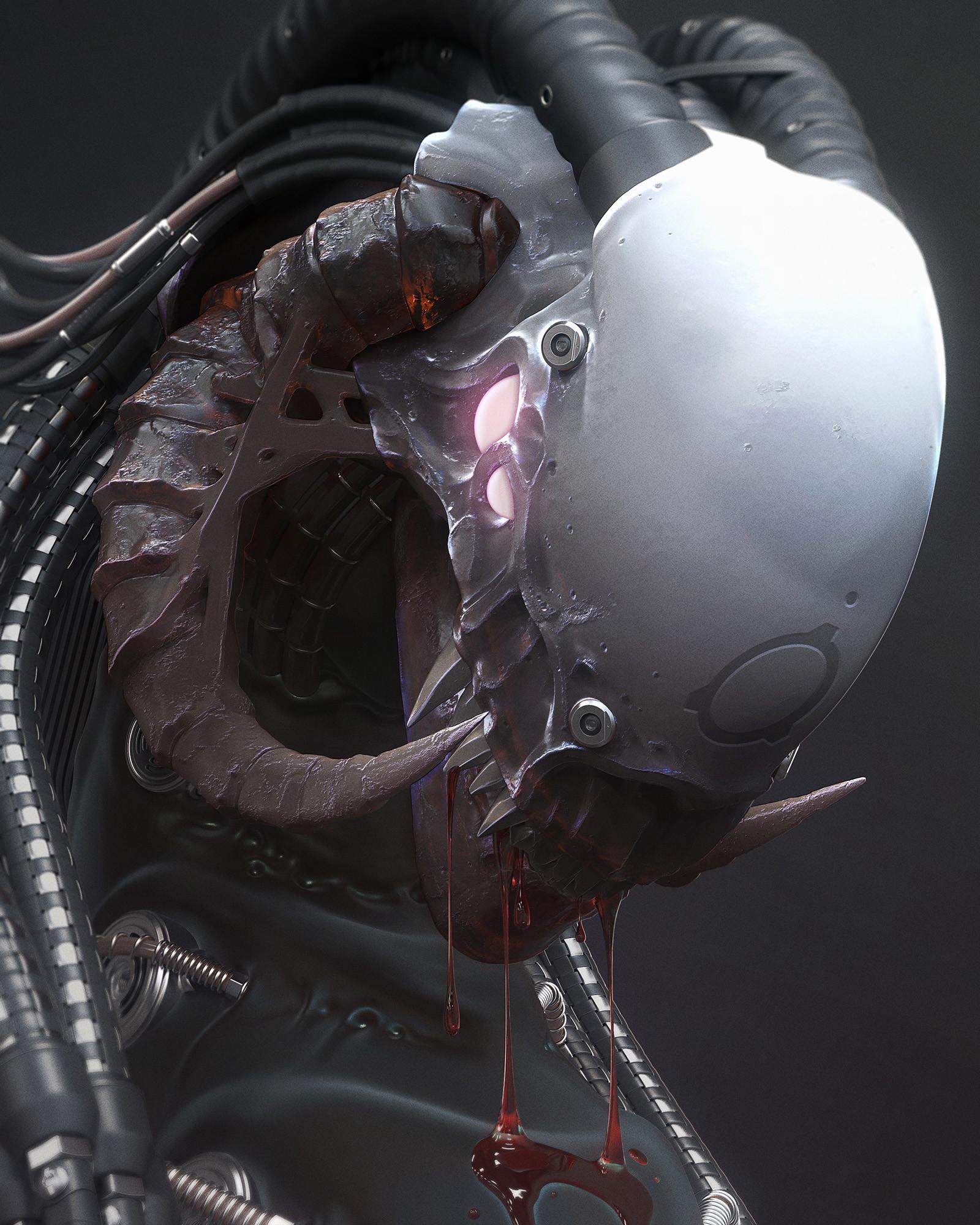 Mark van haitsma skull n sm