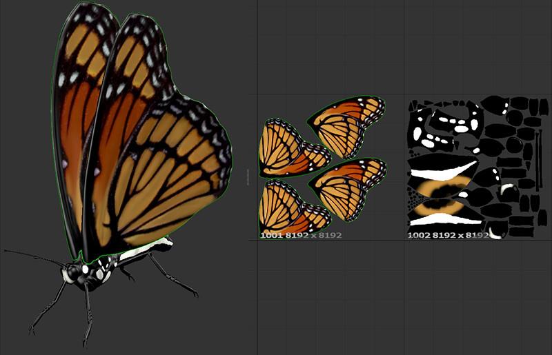 Krzysztof gryzka butterfly textures
