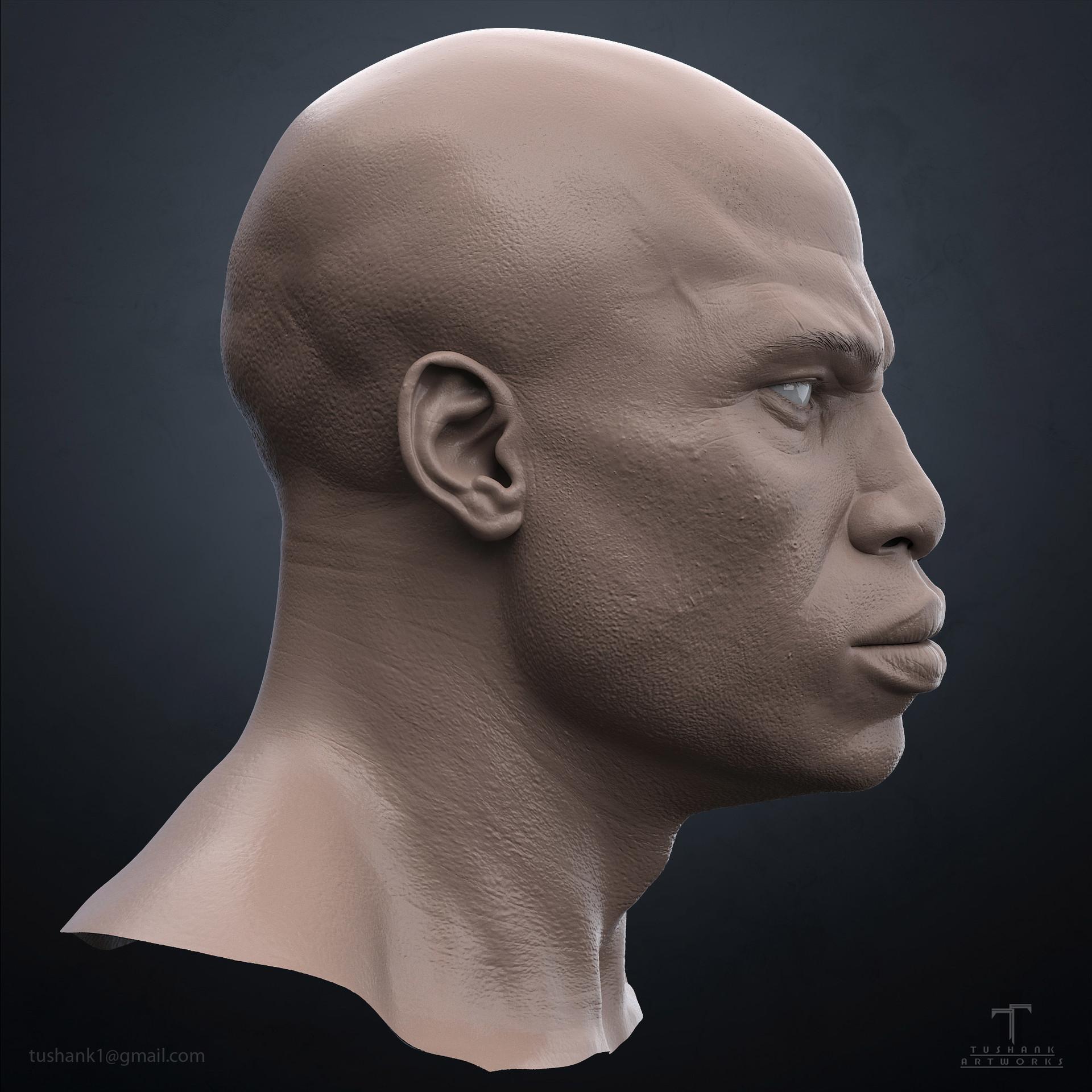 Tushank k jaiswal neolibyan head 3