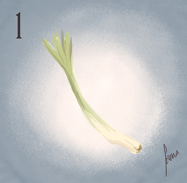 Lorena loguen the spring onion 01 by lorena loguen