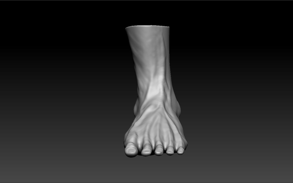 Artstation Human Anatomy Male Foot Dj Choi