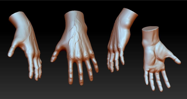 DJ Choi - Human Anatomy - Male Hand
