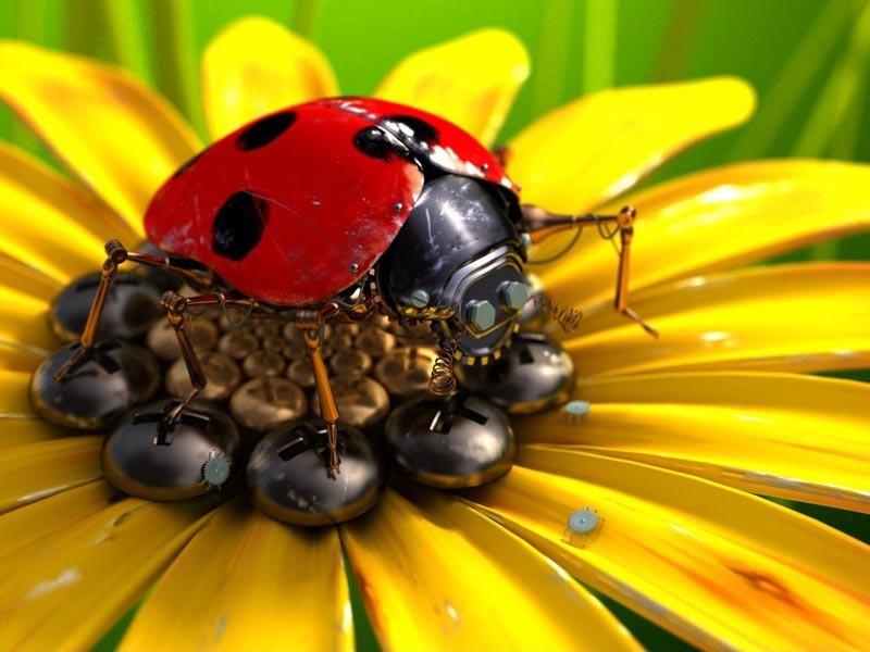 Mechanical Ladybug