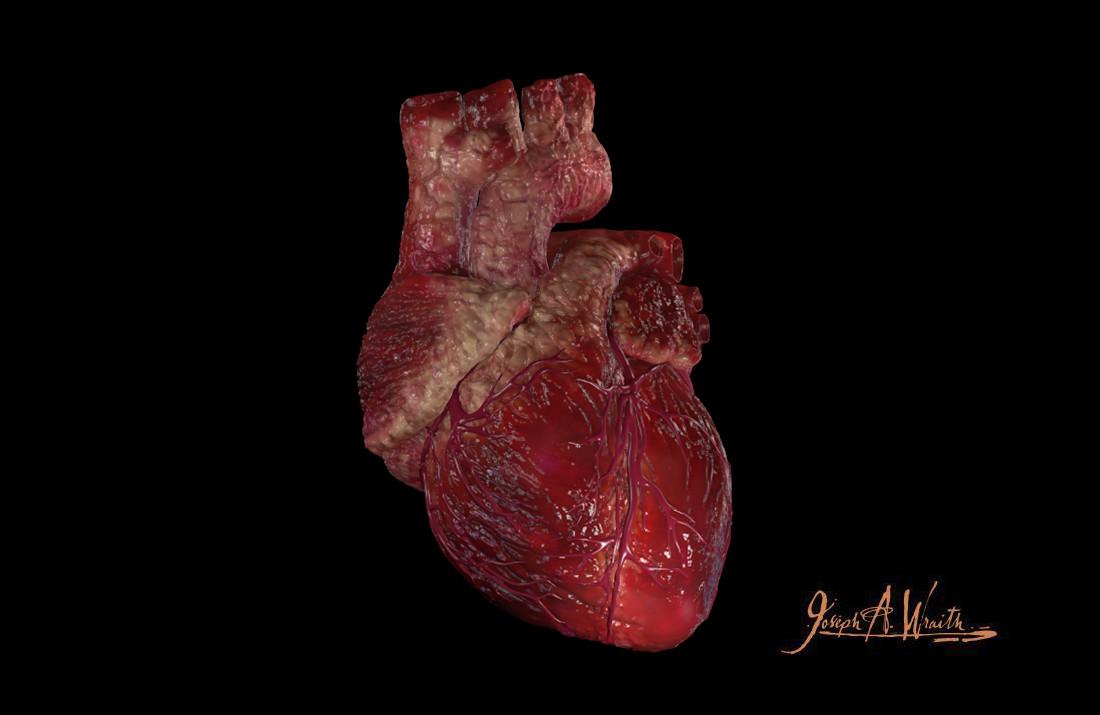Joseph wraith heart