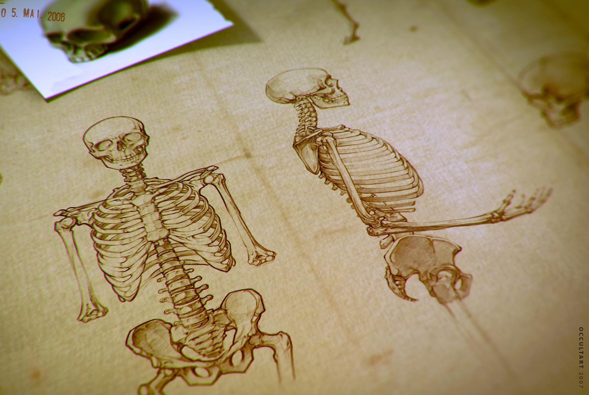 Occultart   skeleton colors