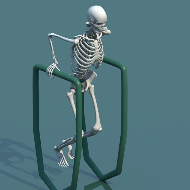 ArtStation - 3d model human skeleton combine with biped, Stephan
