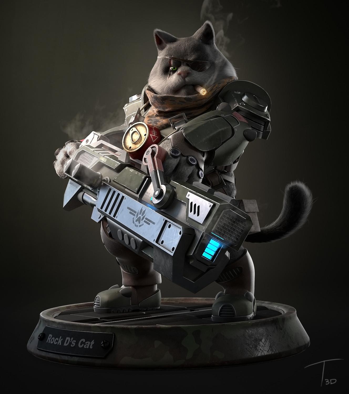 Rock D's Cat