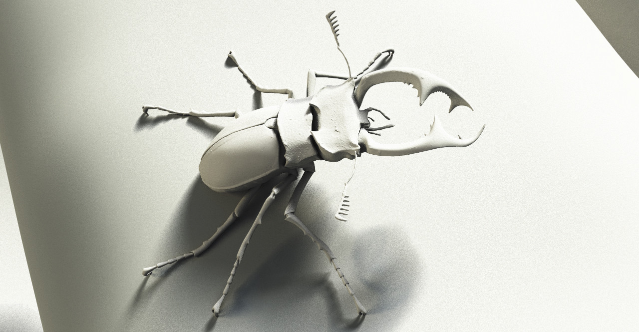 Tamas gyerman bug clay