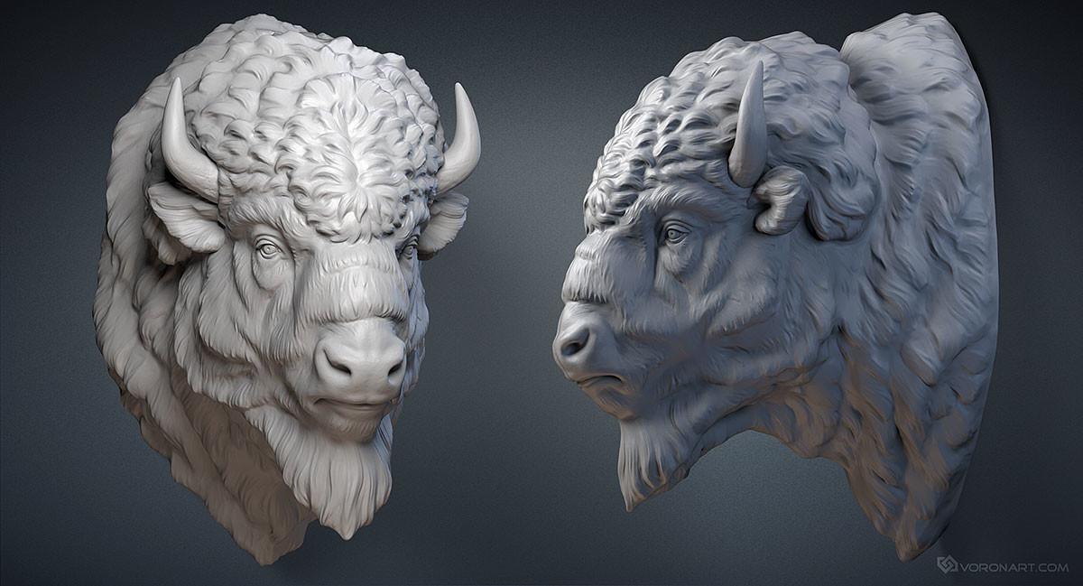 Artstation American Bison Head Digital Sculpture
