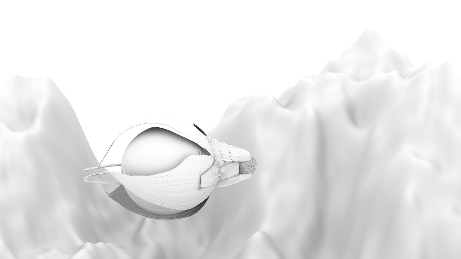 Kresimir jelusic robob3ar 259 280616 ao