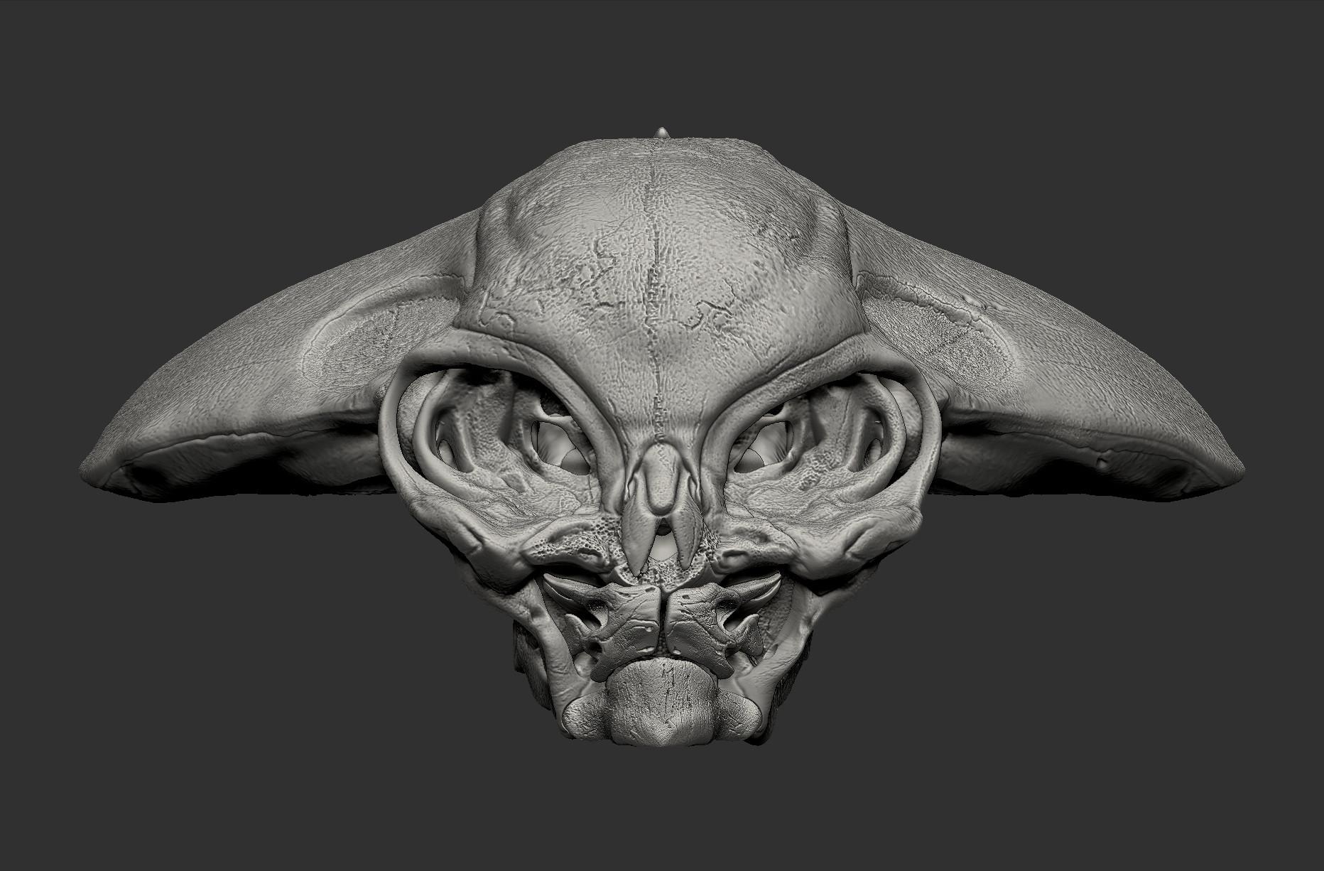 Derek pendleton alienskull frontview dp