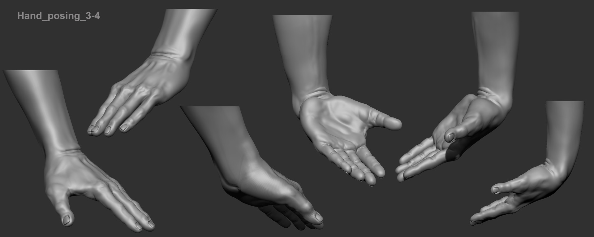 oscar loris human anatomy studies