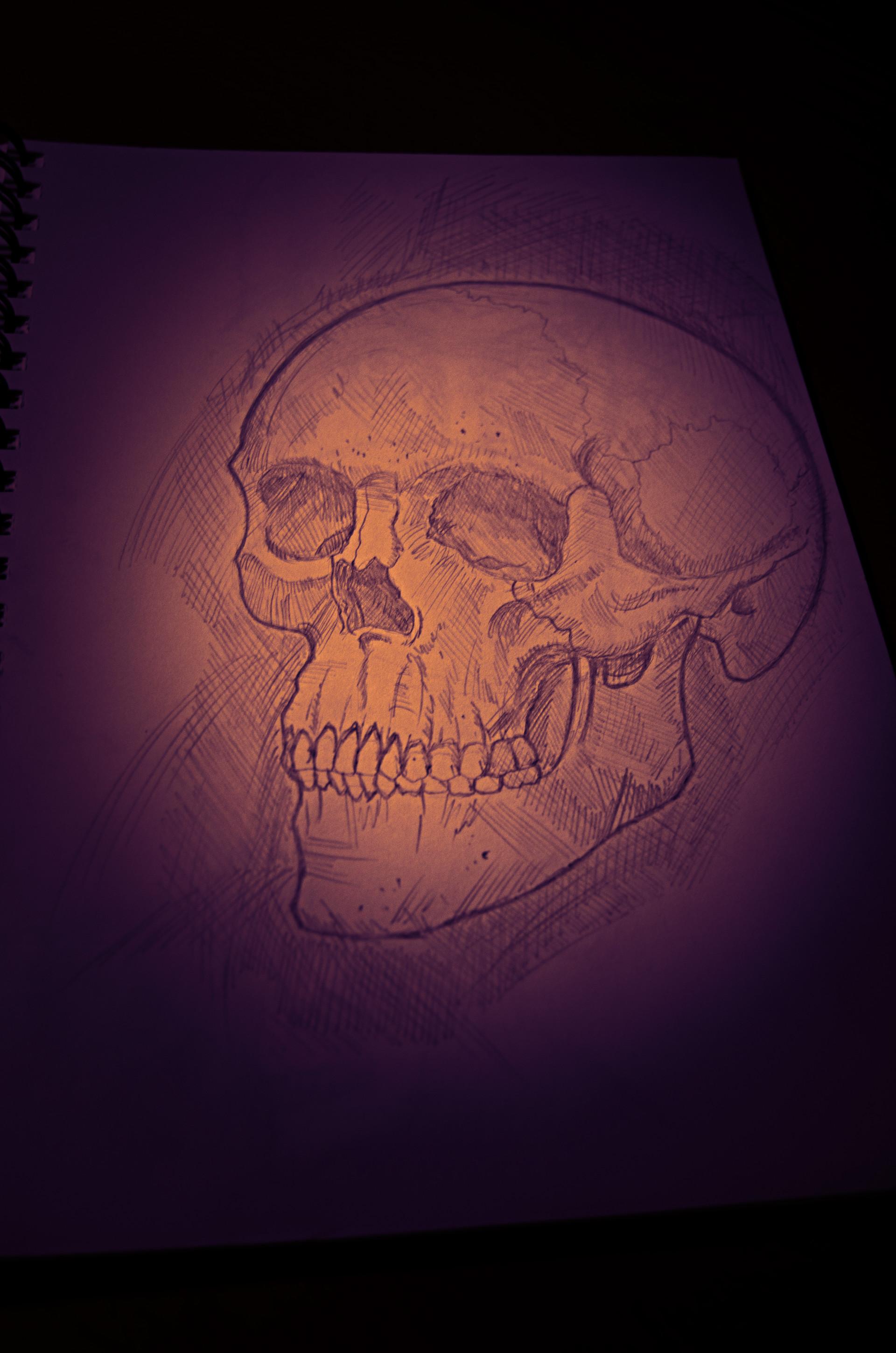 Davide porro skull