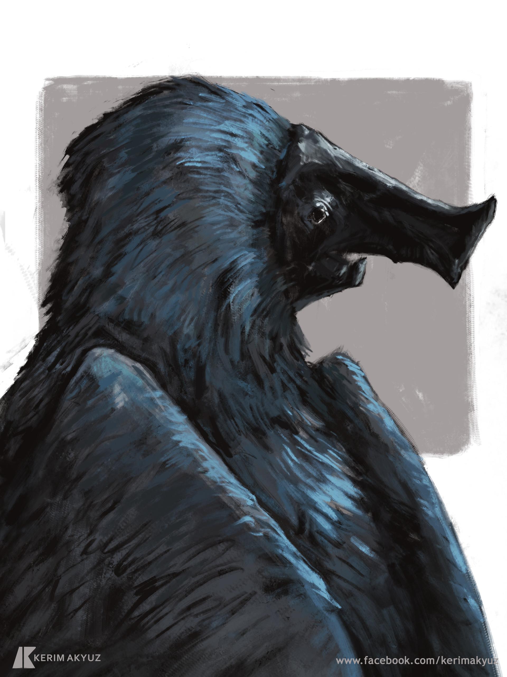 Kerim akyuz 315 bluedevilbird