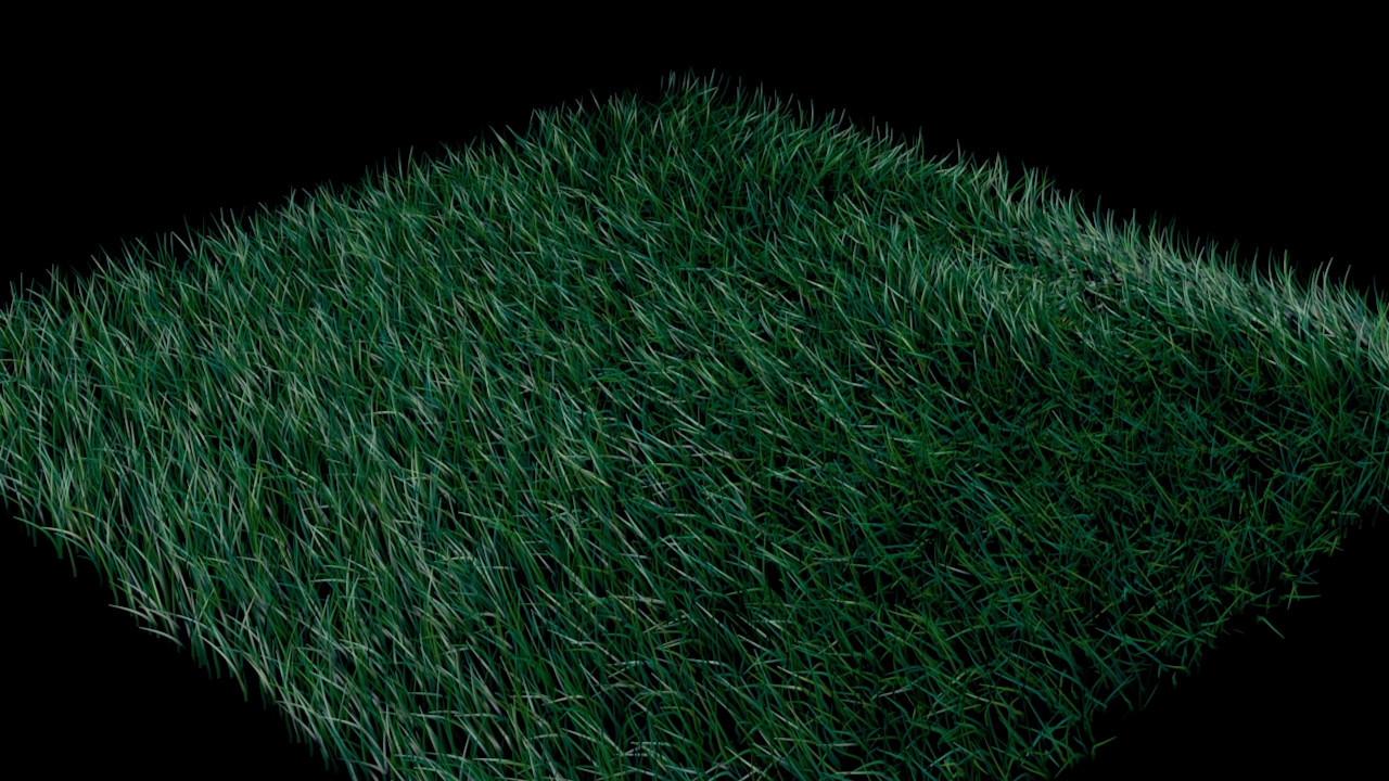 ArtStation - Grass Simulation, Thomas R