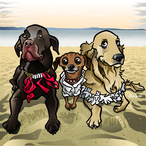Steve rampton beach dogs smaller