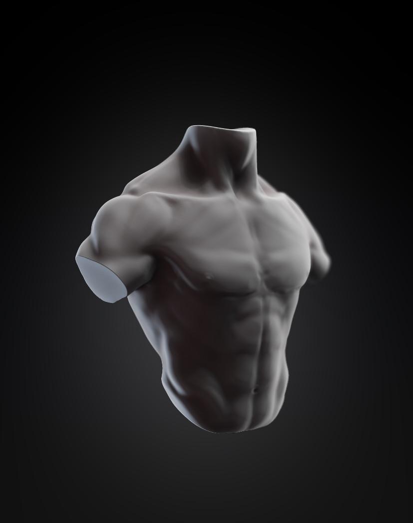 Torso exercise