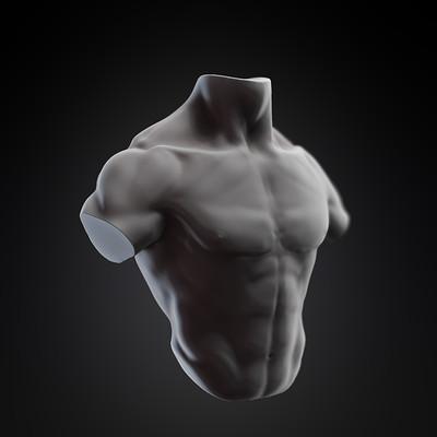 Dara cazamea torso