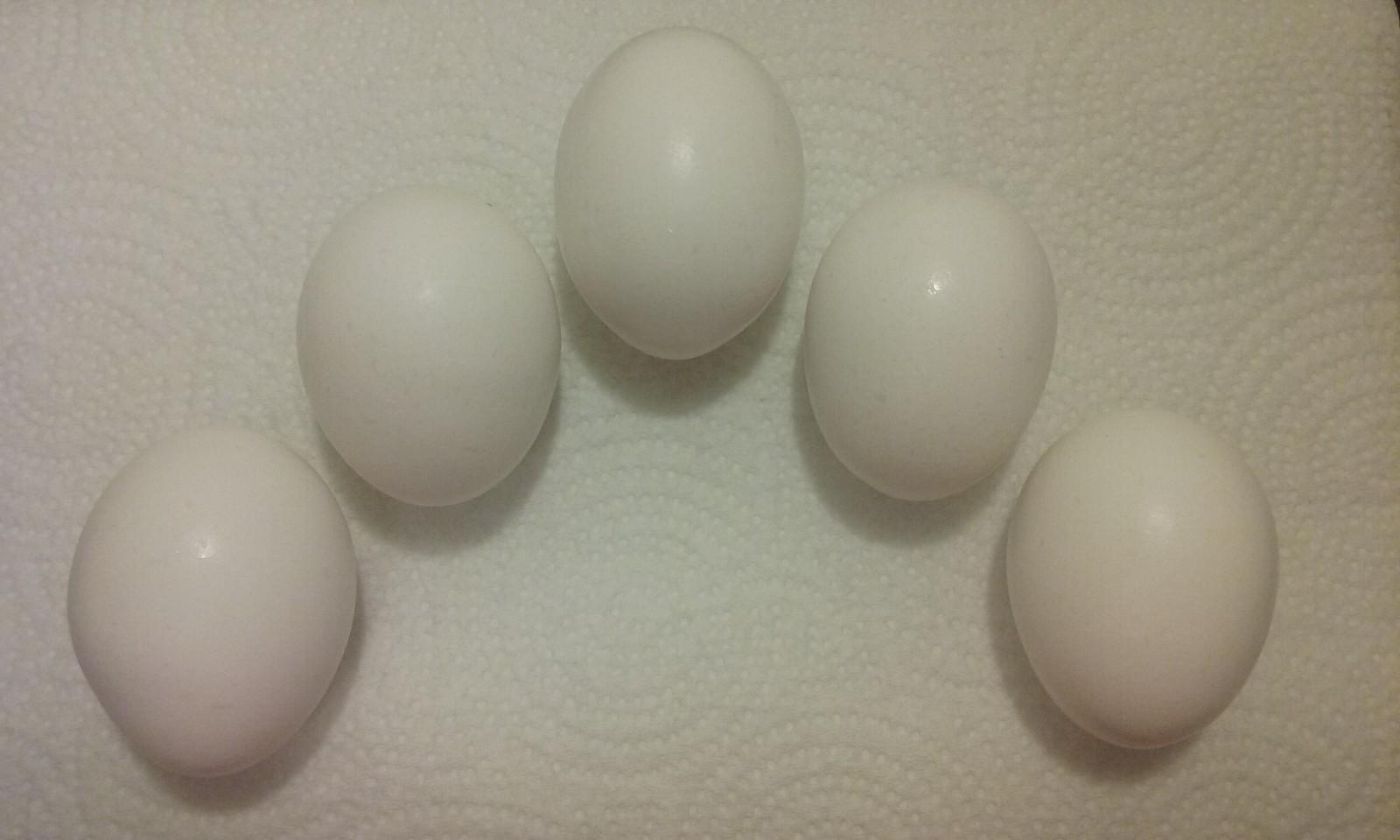 Calm feeling with eggs
