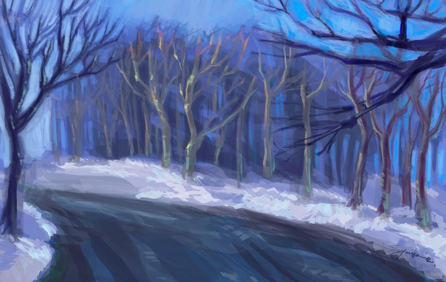 Pau vassileva snowlandscape